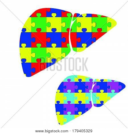Liver Hepar With Color Puzzles.
