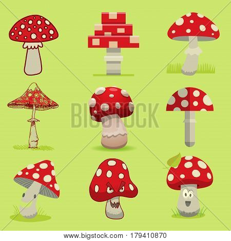 Amanita poisonous mushroom, isolated vector amanita Fly agaric