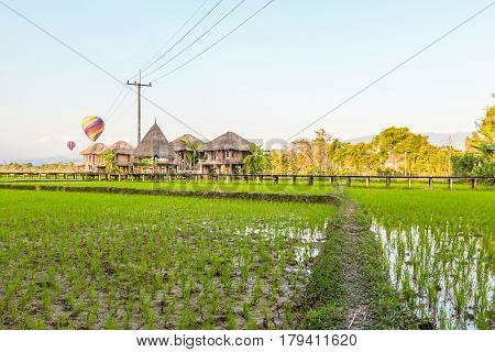 Green rice fields and mountains with colorful balloon at Vang Vieng Laos