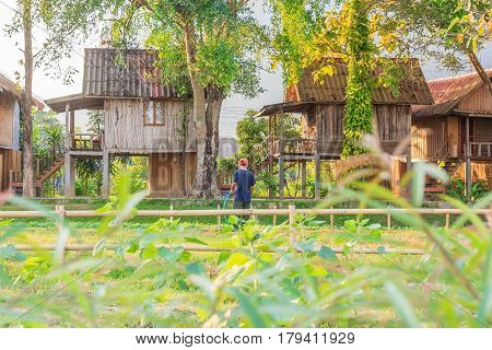 Rural home province of Vang Vieng in Laos with unidentified people watering vegetable garden.