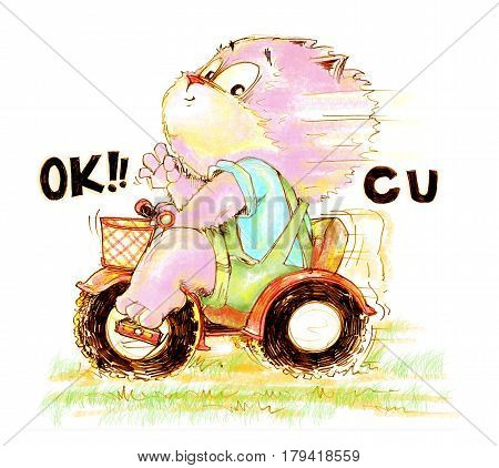 Cat enjoy biker playing ridding of toy 3 wheel bike and show finger symbol is ok see you Character pencil color hand drawing design.