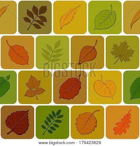 Seamless Background with Autumn Pictogram Leaves of Various Plants, Trees and Shrubs in Squares, Abstract Nature Pattern. Eps10, Contains Transparencies. Vector