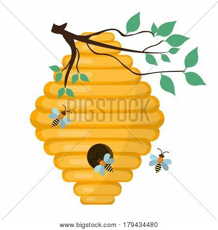 Bee-hive, swarm icon, flat style. Isolated on white background. Vector illustration, clip-art