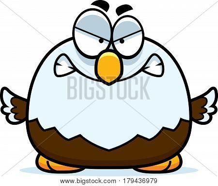 Angry Little Bald Eagle