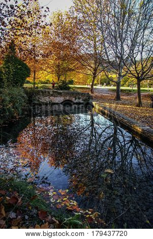 Autumn Landscape With Colorful Leaves, River And Reflections In Water I