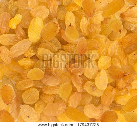 Yellow Sultanas Raisins Background