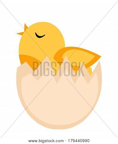 Nestling hatched from egg, yellow chicken icon, flat style. Isolated on white background. Vector illustration, clip-art