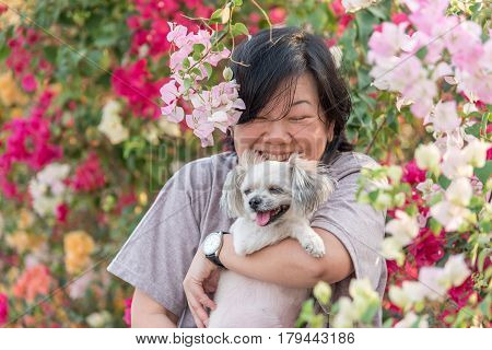 Asia women and dog happy smile hugging her pat is a dog so cute mixed breed with Shih-Tzu Pomeranian and Poodle with beautiful bougainvillea flower