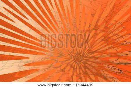 Sun Burst Flower