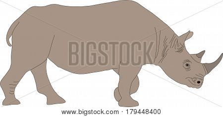Portrait of a standing rhinoceros, hand drawn vector illustration isolated on white background