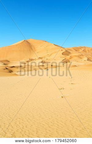 In Oman Old Desert Rub Al Khali