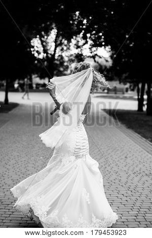 Bride in white dress is spinning in an alley in the park. Dress develops in the wind. Happy bride in a wedding dress is spinning.