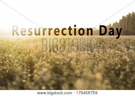 Text RESURRECTION DAY on landscape background. Easter celebration concept