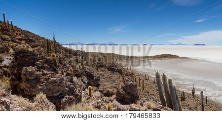 Viewpoint at Isla Pia Pia Salar de Uyuni Bolivia