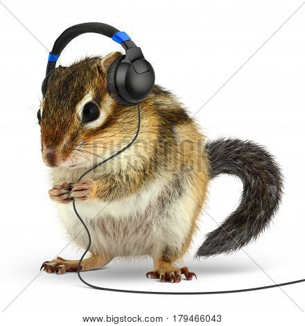 Funny animal chipmunk listening music with earphones on white