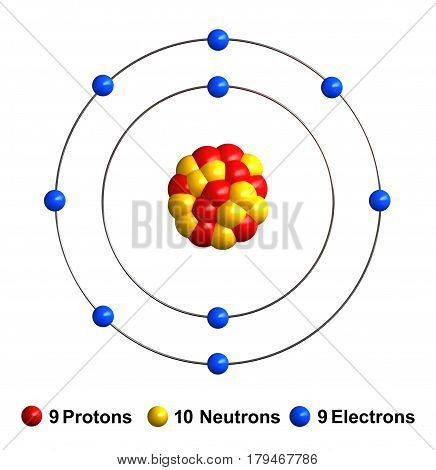 3d render of atom structure of fluorine isolated over white background Protons are represented as red spheres neutron as yellow spheres electrons as blue spheres