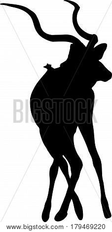 Silhouette of a standing kudu antelope, hand drawn vector illustration isolated on white background
