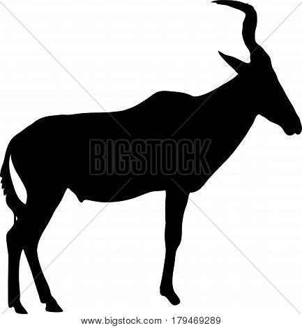 Silhouette of a standing red hartebeest antelope, hand drawn vector illustration isolated on white background