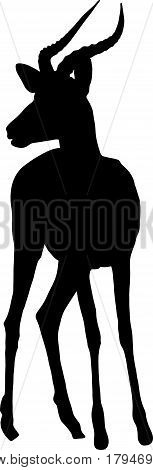 Silhouette of a blackfaced impala antelope, hand drawn vector illustration isolated on white background