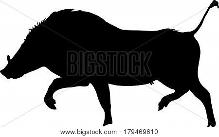 Silhouette of a funny moving standing warthog, hand drawn vector illustration isolated on white background