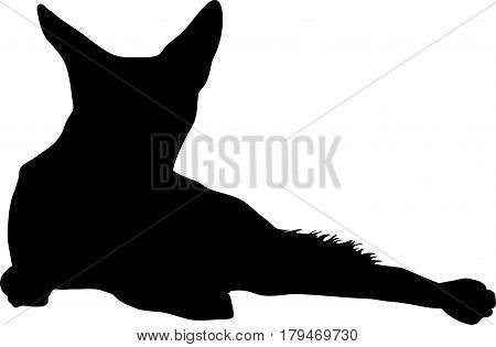 Silhouette of lying black backed jackal, hand drawn vector illustration isolated on white background