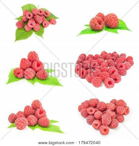 Collection of sweet raspberry on a white background clipping path