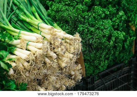 Different greens. Onion and parsley on the farmers market. Natural local products on the farm market. Harvest. Seasonal products. Food.