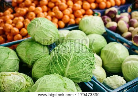 Fresh cabbage on the farmers market. Dietary and vegetarian product. Natural local products on the farm market. Harvest. Seasonal products. Food. Vegetables.