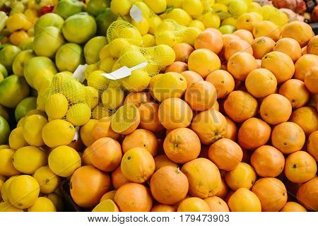 Citrus mix from fresh lemon, orange, sweetie, sweety, pomelo on the farm market. Products rich in vitamins. Natural local products on the farm market. Harvest. Seasonal products. Food.