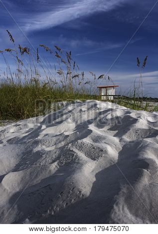 Sea oats and ripples in the hot sands of the Atlantic coast in Jetty Park near Cocoa Beach, Florida,
