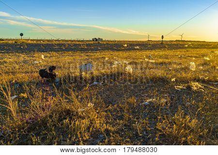 Garbage At Patagonian Landscape Santa Cruz Argentina
