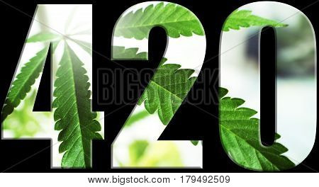 Marijuana 420 Logo With Leaf Inside High Quality