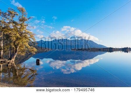 Autumn Landscape Reflected In Lake Waters
