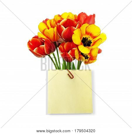 A beautiful bouquet of fresh garden tulips with a congratulatory note with space for your text