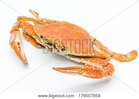 Steamed craps isolated on a white background Closed up