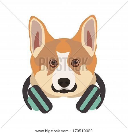 Basenji breed dog portrait with headphones on neck . Vector illustration of domestic animal head with round eyes, black nose and white, red, brown, beige hair, wearing earphones, hipster puppy style