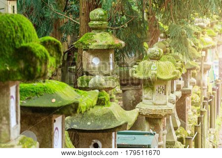 Rows of ancient stone concrete and wooden lanterns covered in moss. Nara park Japan