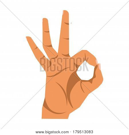 Okay hand sign close up illustration on white background. Human arm gesturing nonverbal communication agreement symbol wordless clues vector in flat design. Icon of forefinger and thumb making circle