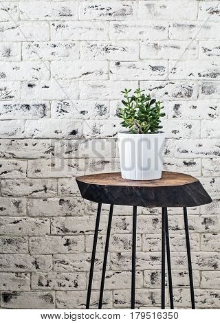 Scandinavian loft interior: white brick wall, table with succulent plant