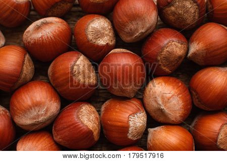 Hazelnut Nut Health Organic Brown Filbert Autumn Background Concept