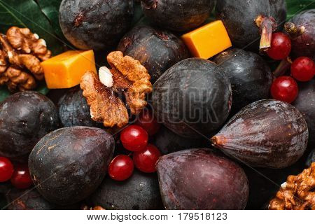 Walnuts with figs and cheese background. Close-up of mix of fig fruits and nuts, with red viburnum berries, wine snack backdrop. Gourmet, cooking, delicatessen concept