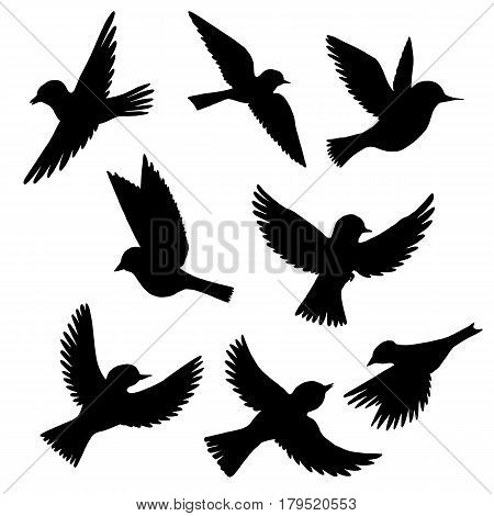 vector set of flying birds silhouettes, hand drawn songbirds, isolated vector elements