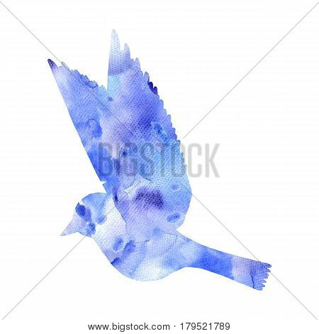 watercolor flying bird silhouette, hand drawn songbird, isolated painting element
