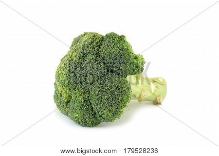 isolated broccoli on white background, shallow focus