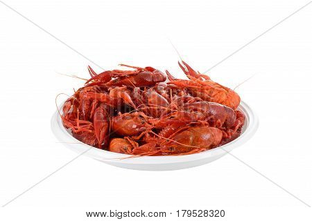 isolated red raw crayfish on white plate with clipping path, isometric view