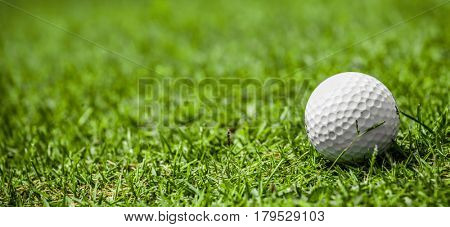 Golf ball on green grass of golf course, copy space