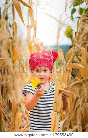 Dirty Child Looking At The Flower In Her Hand In Red Bandana And Stripe Tee In The Cornfield. Dry Co