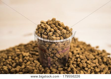 Dry pet nutrition with a cup close up in which the food is poured in the middle of the frame. Health pet concept