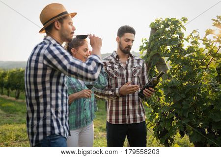 People sampling and tasting wines in winegrowers vineyard