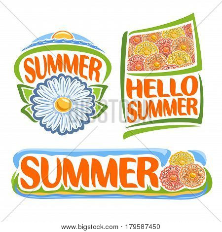 Vector logo of Summer Flowers: icon of chamomile, sea sunrise on sky horizon, flag with floral background of chrysanthemum flower, title text: hello summer, clip art design banner of meadow with grass
